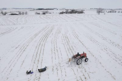 Photo: A tractor pulls children on a sled through a fallow field.