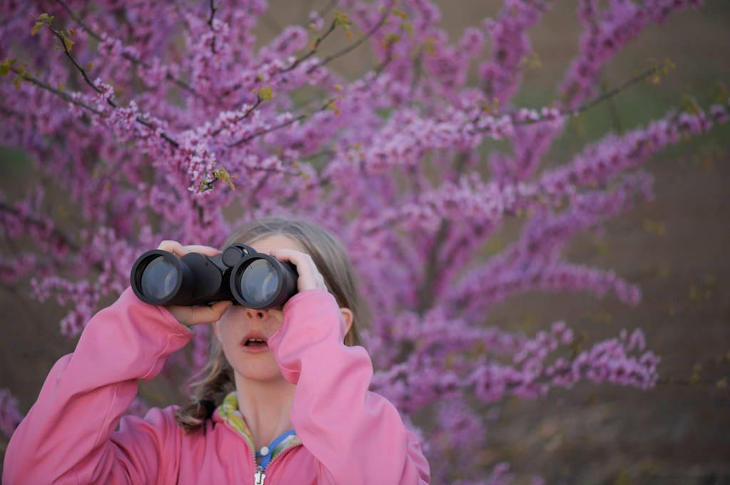 Photo: A young girl bird watching along the Steamboat Trace trail between Peru and Nebraska City, Nebraska.