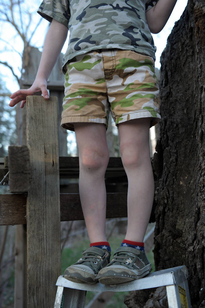 Photo: A young boy stands on a ladder by his treehouse at his home in Lincoln, Nebraska.