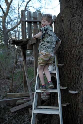 Photo: A young boy climbs a ladder to his treehouse at his home in Lincoln, Nebraska.