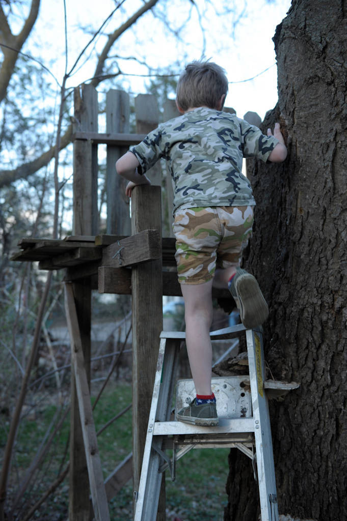 Photo: A young boy climbing a ladder to his treehouse at his home in Lincoln, Nebraska.