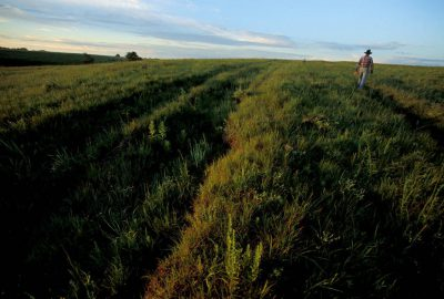 Photo: Ruts from the Santa Fe Trail cut through the grass of the Big Basin Prairie Preserve in the Flint Hills of Kansas.