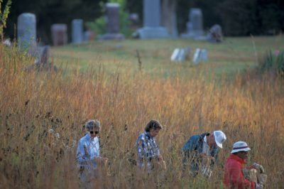 Photo: Volunteers collect native prairie seed from the Polk City (IA) cemetery to restore the nearby Walnut Creek NWR. The cemetery is one of the few remaining stands of virgin prairie in Iowa.