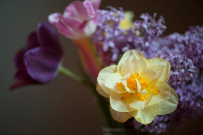 Photo: A vase of spring flowers.