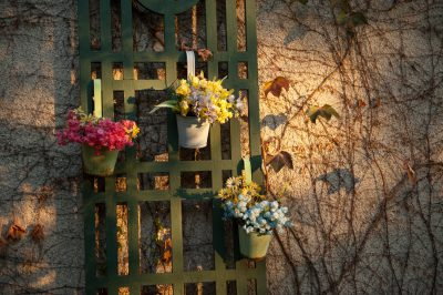 Photo: Flowers hang on a home in Lincoln, Nebraska.