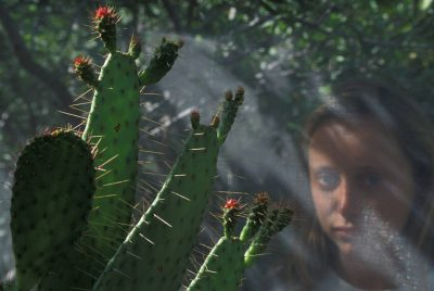 Photo: A woman stares at a rare cactus plant at Archbold Biological Station at Lake Placid in Tampa, Florida.