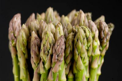 Photo: Studio portrait of asparagus.
