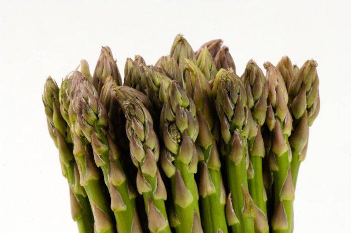 Photo: Studio portrait of asparagus.