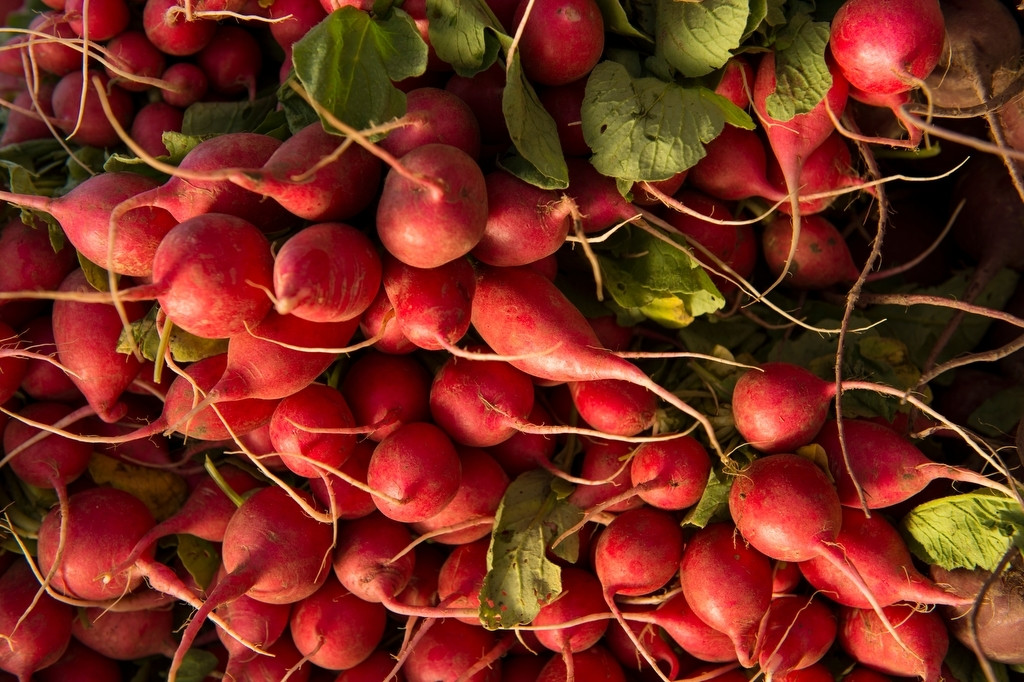 Photo: Radishes at the Farmer's Market in the historic Haymarket district of Lincoln, Nebraska.