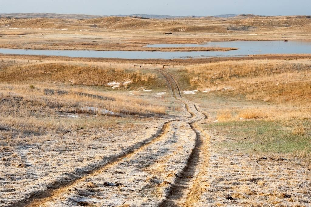 Photo: Tire tracks on ranch land in the Nebraska Sandhills.