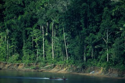Photo: A boat travels up a river in Madidi National Park, Bolivia.