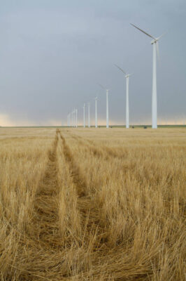Photo: Windmills in Southwest Kansas.