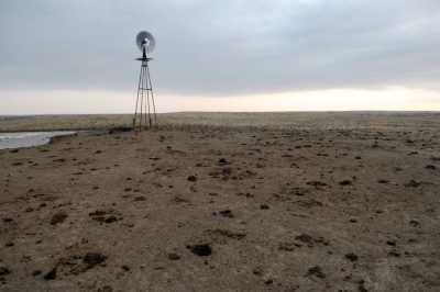 Photo: Cow manure around a small water hole and windmill near Laverne, OK.
