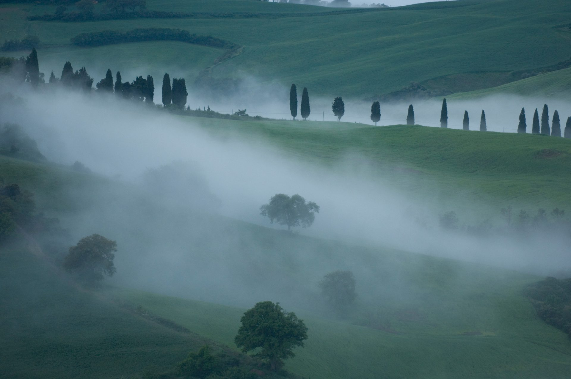 Photo: An early morning mist rolls over hills and vineyards near Pienza, Italy.