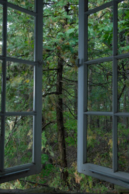 Photo: An open window leads to the back woods of the Lake Champlain area in VT.
