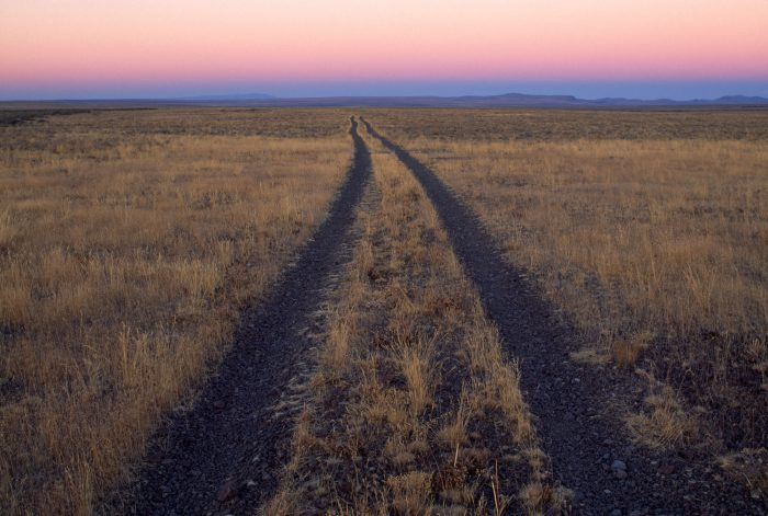 Photo: Tire tracks leading thorough a field of sagebrush in Pinedale, Wyoming.