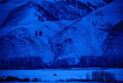 Photo: A rancher on horseback in Idaho's snow-blanketed Salmon Valley at dusk.