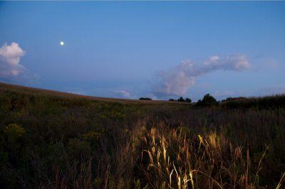 Photo: Headlights and moonlight illuminate a field in Nebraska.