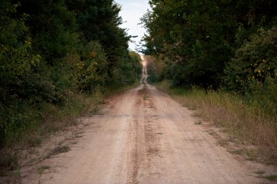 Photo: A dirt road stretches through the overgrowth in Nebraska.
