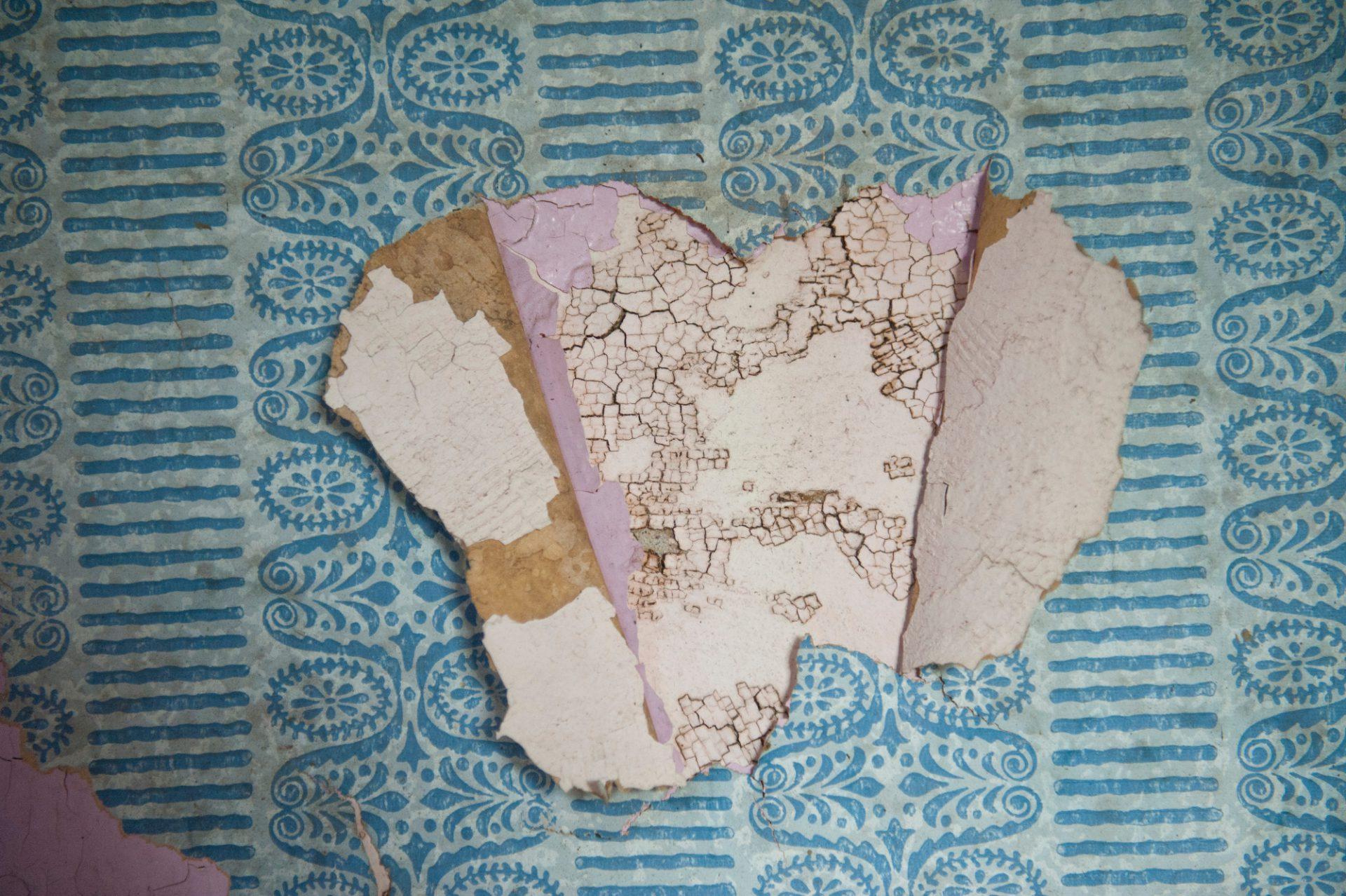 Photo: Wallpaper peels away from an abandoned house in Otoe County, Nebraska.