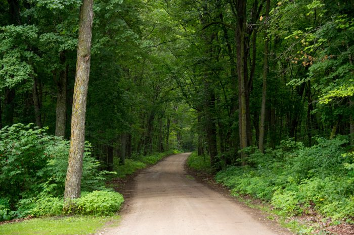 Photo: The road to Trader's Bay Resort near Walker, Minnesota.