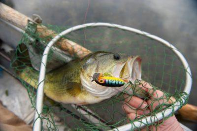 Photo: A man catches a fish near Valparaiso, Nebraska.