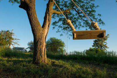 Photo: A tree swing sways in the wind.