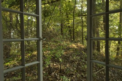 Photo: An open window leads to the back woods near Lake Champlain.