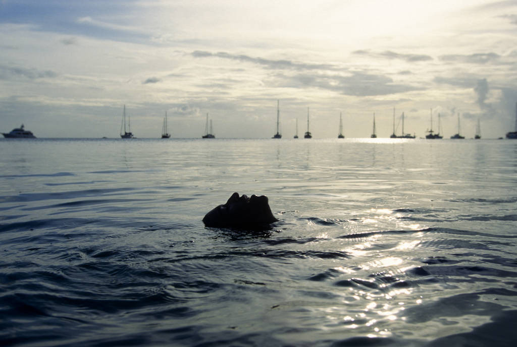 Photo: A swimmer comes up to the surface to breathe in St. Lucia, the Caribbean.