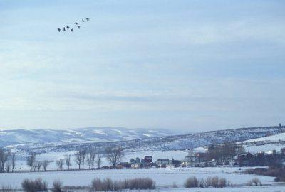 Photo: The Johnson Ranch near Laketown, Utah.