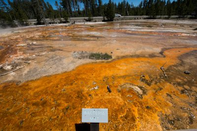 Photo: A scene from Yellowstone National Park, Wyoming.