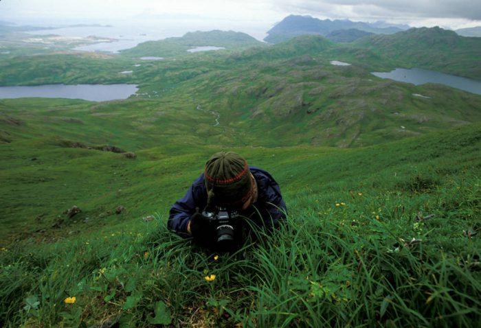 Photo: A man photographs wildflowers atop Mount Reed on Adak Island in Alaska.