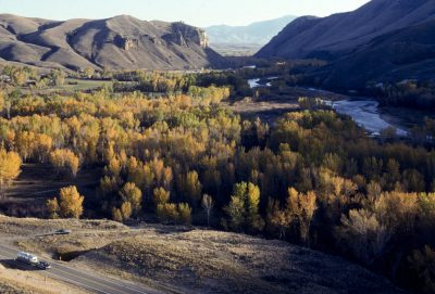Photo: Fall color on the Salmon River in Idaho.