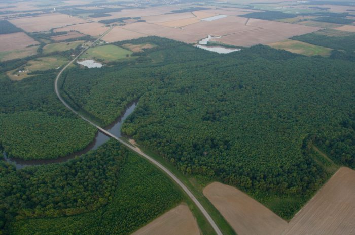 Photo: An aerial of bayou DeView, where there have been ivory billed woodpecker sightings in Arkansas.