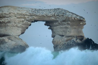 Photo: Scenics on the Pacific coast of Chile, near Antofagasta, showing sea stacks.