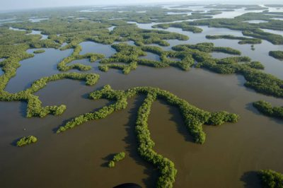 Photo: Aerials of Everglades National Park in the the 10,000 Islands area on the park's west side near Naples.