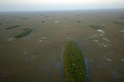 Photo: Aerial of Everglades National Park showing hardwood hammocks that dot the river of grass north of Flamingo.
