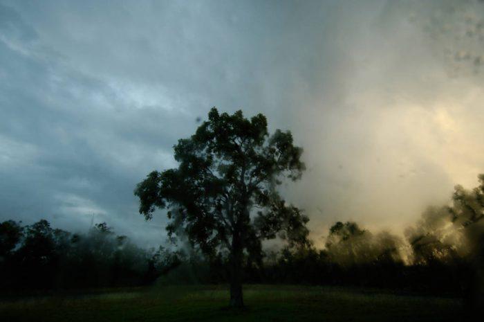 Photo: A rain-soaked landscape near Mahogany Hammock in EvergladesNational Park, Florida.