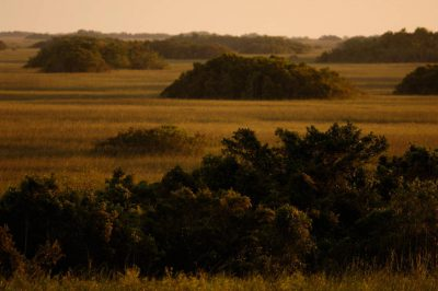 Photo: A scenic view of Shark Valley at the north end of Everglades National Park.