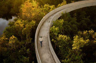 Photo: A bike/bus trail stretches seven miles along Everglades National Park.