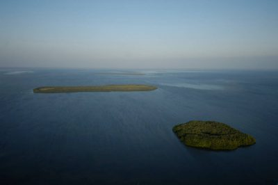 Photo: Mangroves cover islands in Florida Bay south of Everglades National Park.
