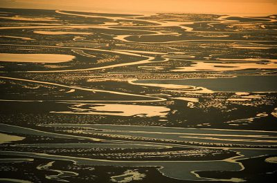 Photo: The Colville River Delta on Alaska's North Slope, an area rich in wildlife.