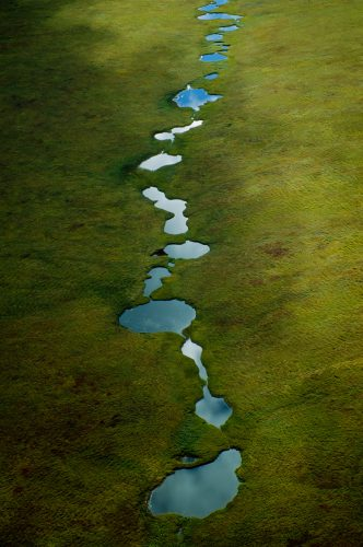 Photo: A beaded stream caused by permafrost and snow melt.