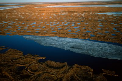 Photo: Freezing and thawing creates polygon shapes in a river delta on the North Slope of Alaska.