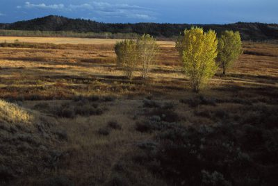 Photo: The Charles M. Russell National Wildlife Refuge, along the upper Missouri River near Malta, Montana.