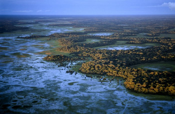 Photo: Aerial of the Brazilian Pantanal near Pousada Barra Mansa during the wet season.