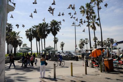 Photo: Scene from Venice beach in California.