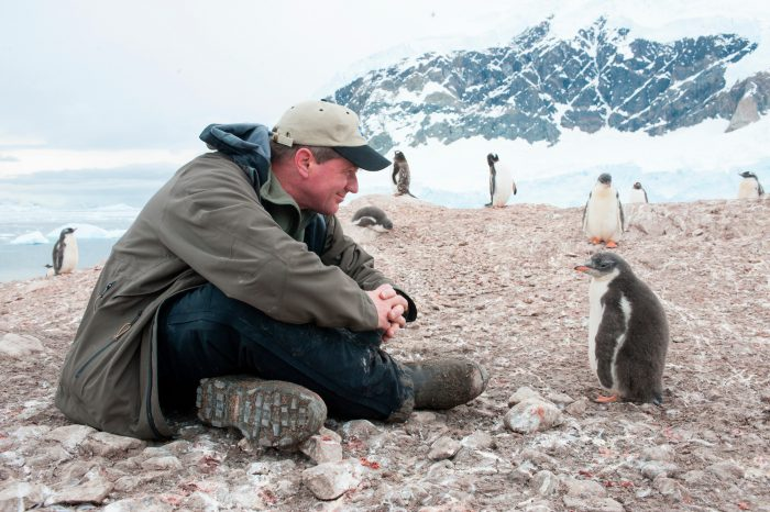 Joel Sartore on assignment at a gentoo penguin (Pygoscelis papua papua) (IUCN: Near Threatened) and Adelie penguin (Pygoscelis adeliae) colony on Danco Island, Antarctica.