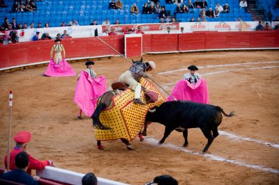 Photo: A bull fight at the Plaza del Torros in Mexico City.