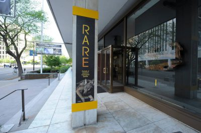 Photo: The Rare show at National Geographic Society Headquarters in Washington D.C.